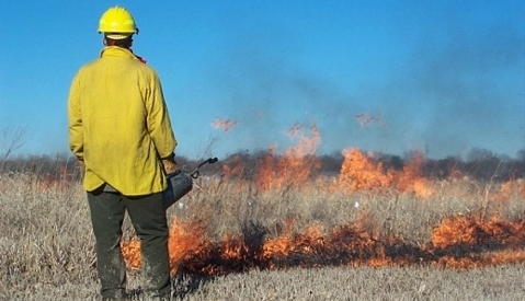 siu students research field fire